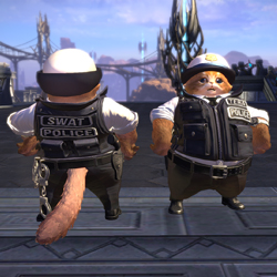 Popo Police
